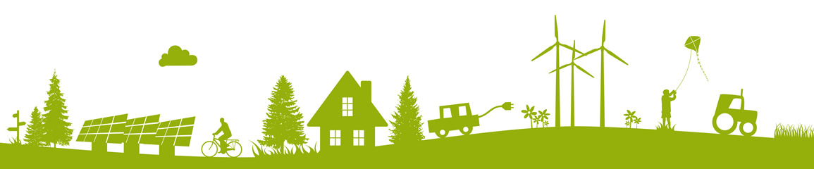The Green Homes Grant